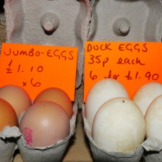 Eggs on a market stall